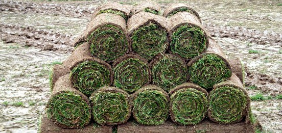 Abbey Turf Products