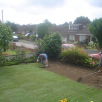Abbey Turf Landscape Services