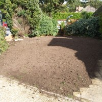 Abbey Turf Landscape Project