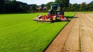 Turf suppliers in Hampshire