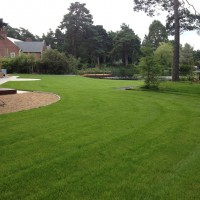 Abbey Turf Landscape Service