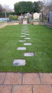 Garden Lawn Turf